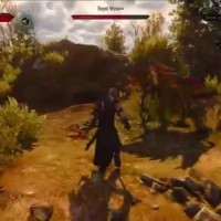 The Witcher 3: Wild Hunt - Official Gameplay Presentation PAX 2015 - YouTube