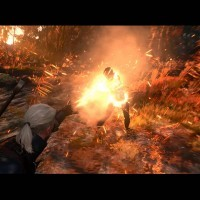 The Witcher 3: Wild Hunt - Dev Diary: Monsters - YouTube